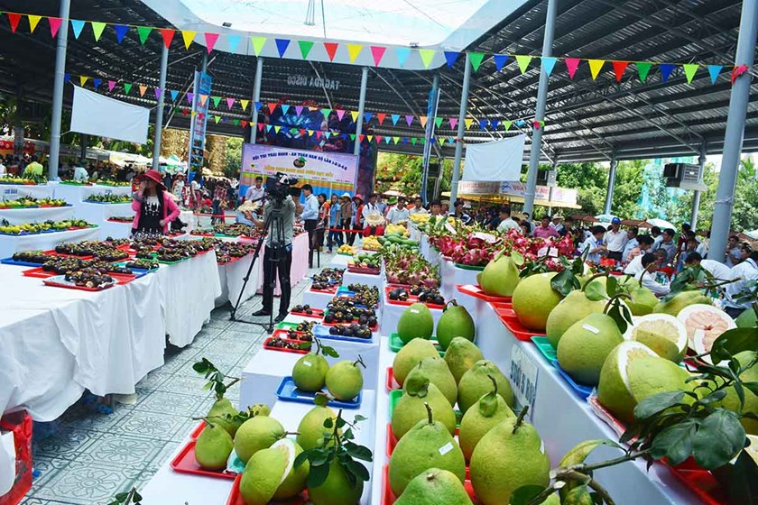 A file photo from Ho Chi Minh City's Suoi Tien Theme Park's website shows fruits displayed as entries for a fruit contest as part of the Southern Fruits Festival held at the park in District 9 last year.