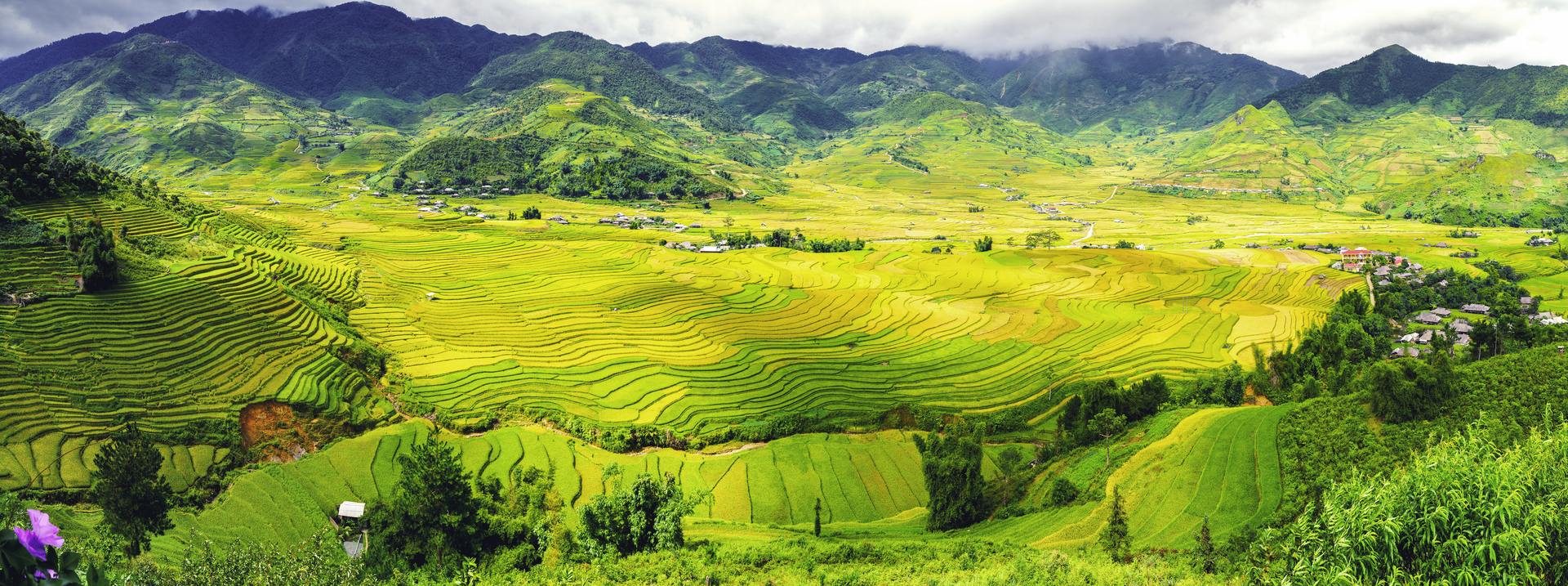 five-destinations-with-terrific-terraced-fields-for-an-october-visit-in-vietnam
