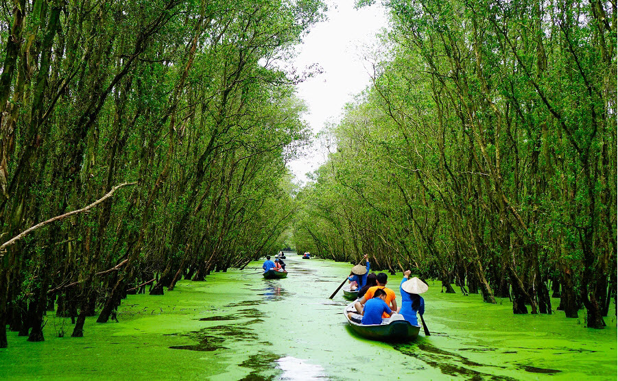Tourists take a boat tour of Tra Su Cajuput Forest in Tinh Bien District, the Mekong Delta province of An Giang. Photo by VnExpress/Phan Loc